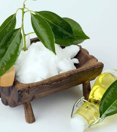 Le gel de Camphre : un analgésique efficace pour vos douleurs